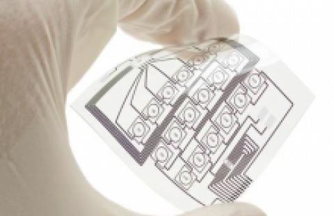 Quaterrylene Synthesizing Process